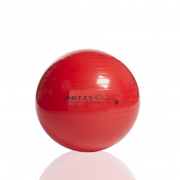 ARTZT - Fitness-Ball Standard